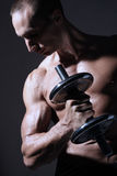 muscular body builder Royalty Free Stock Photography