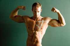 Sexy muscular body builder Stock Photography