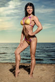Sexy muscular build brunette on the beach Stock Photos