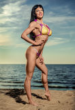muscular build brunette on the beach Stock Photos