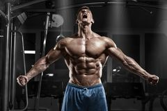 Sexy muscular man in gym, shaped abdominal. Strong male naked torso abs, working out Stock Photos
