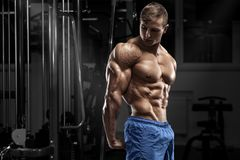 Muscular man posing in gym, shaped abdominal, showing triceps. Strong male naked torso abs, working out.  royalty free stock image