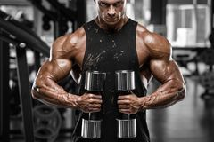 muscular man working out in gym. Strong male bodybuilder Stock Images