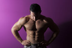 Sexy muscular model. Royalty Free Stock Images