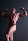 Sexy muscular nude male body builder Stock Image
