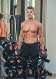 Naked guy with muscular body doing exercise with dumbbells on a biceps at the gym. Naked guy with muscular body doing exercise with dumbbells on a biceps at a royalty free stock photography