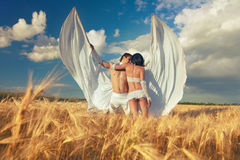 Lovers with white wings on wheat field Stock Photography