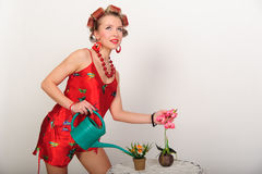 Sexy pin up housewife Stock Photography