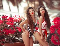 Free Sexy Pinup Girls With Red Lipstick Makeup Blowing Kiss With Pout Lips. Summer Lifestyle Fashion Portrait Of Two Brunette Women. Stock Photos - 153286083
