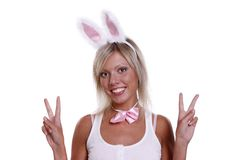 Sexy playboy girl. Woman wearing fancy dress on Halloween. A young female dressed up as rabbit Cute girl in sexy playboy costume on white backgrounds Royalty Free Stock Images