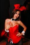 Sexy Playboy Girl Stock Photography