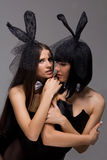 Sexy playgirls wearing a bunny costumes Royalty Free Stock Images