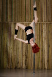 Sexy pole dance woman. Royalty Free Stock Images
