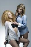 Sexy Porträt von zwei Modemädchen Lizenzfreie Stockfotos