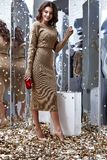 Sexy pretty fashion model brunette hair woman wear beige long dr. Ess shoe style for party holiday birthday clothes organic natural mirror sequins background Royalty Free Stock Photo
