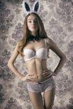 Sexy rabbit woman Stock Photos