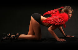Sexy red Angel Stock Photo