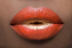 Sexy Red and Gold Lips Stock Image