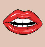 Sexy Red Lips Royalty Free Stock Photos