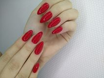 Sexy red manicure. Long nails on the texture girl woman polish pepper female beautiful chili skin care white hand erotic beauty background close up closeup art royalty free stock photo