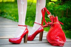 Sexy red shoes Royalty Free Stock Images