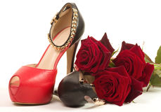 Sexy red shoes isolated Royalty Free Stock Images