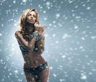 A sexy redhead woman on a snowy background Stock Photos