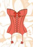 Sexy retro style corset Stock Images