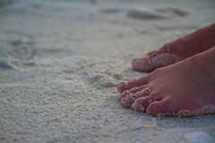 Sexy Sandy feet on the beach Royalty Free Stock Photo
