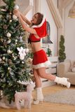 Sexy Santa Claus girl putting Christmas ornaments on the tree Royalty Free Stock Photos