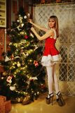 Sexy Santa Claus girl putting Christmas ornaments on the tree Royalty Free Stock Images