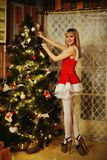 Sexy Santa Claus girl putting Christmas ornaments on the tree Stock Photos