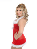 Sexy santa clause woman in party christmas clothes Royalty Free Stock Image