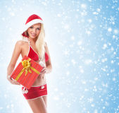 A sexy Santa girl holding a present on a snowy background Royalty Free Stock Photography