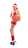 A sexy Santa girl holding a present on a white background Stock Images