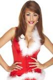 Santa helper. On white background stock image