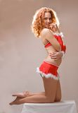 Sexy santa helper girl Royalty Free Stock Image