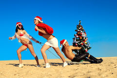 Sexy Santas  pulling Santa at the beach Stock Photos