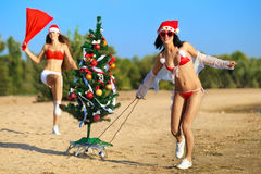 Sexy Santas at the tropical beach Royalty Free Stock Photo