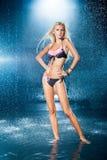 Sexy schönes Mädchen im Wasser Stockbild