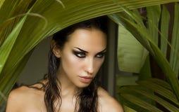 Sexy Schönheit, die hinter den Palmblättern sich versteckt lizenzfreies stockbild