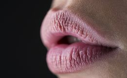 Sexy, sensual lip, mouth open. Lip protection. Lip care and beauty. Closeup of beautiful woman healthy lips. Woman`s lip. Female model mouth with smooth royalty free stock photography