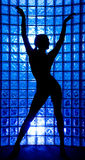 Silhouette. Female on a blue glass wall stock images