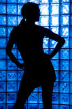 Sexy Silhouette Royalty Free Stock Photos