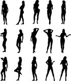 Sexy Silouettes. Illustration of sexy woman silhouettes-Vector Royalty Free Stock Photos