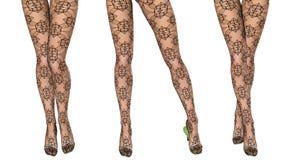 Sexy slim female legs in dark stockings. Stock Image