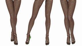 Sexy slim female legs in dark stockings. Royalty Free Stock Photography
