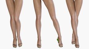 Sexy slim female legs in dark stockings. Stock Photo
