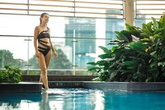 Sexy slim female posing between green plants in pool on rooftop with cityscape. Luxury holidays in Asia stock images