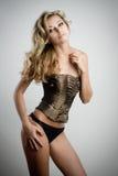 Sexy slim woman Stock Photography
